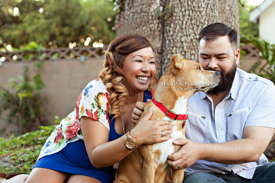 Maternity Photos With Your Dog (2)