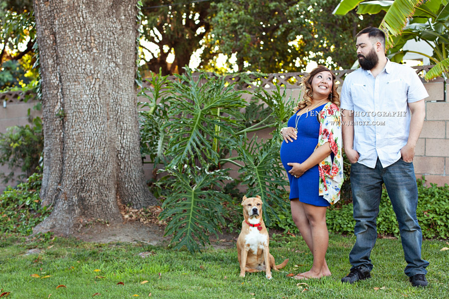 Maternity Photos With Your Dog (4)