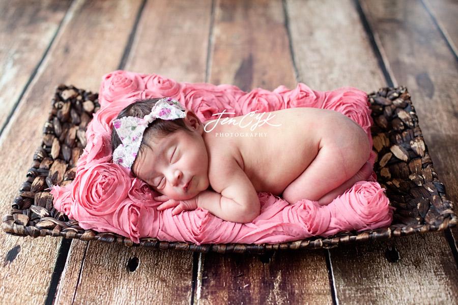 Gorgeous Newborn Baby Girl (4)